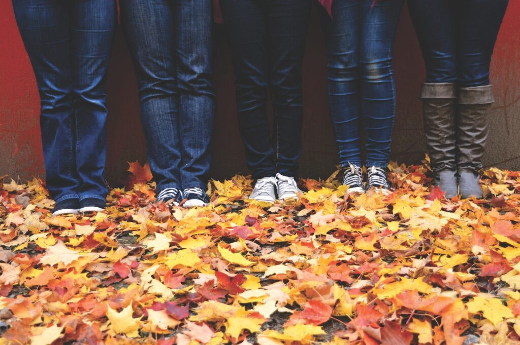 autumn 1867220 1920